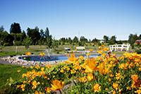 Ботанический парк Юлиматтила