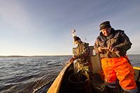 Места для рыбалки